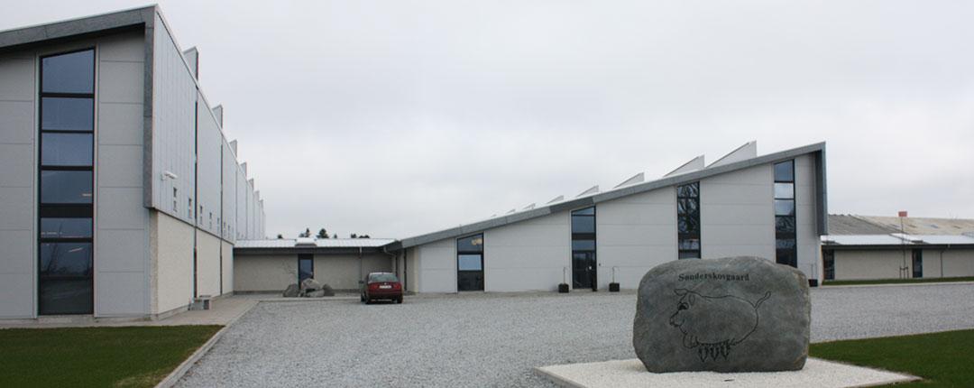 Palle Joest Andersen, Sønderskov