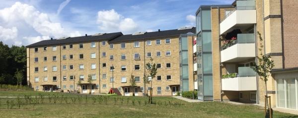 Rughaven, Aalborg
